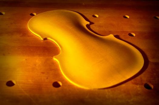 ヴァイオリンの表板のアーチ