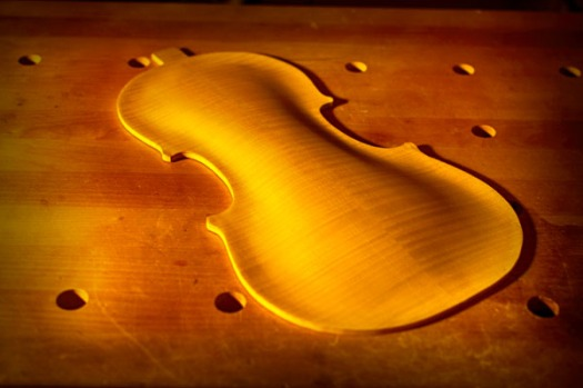 ヴァイオリンの裏板のアーチ