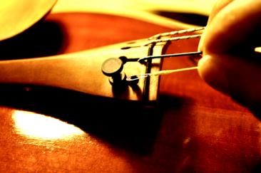 弦のループを引っ掛けます