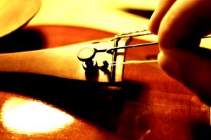 弦のループを使用してプロテクターを固定させます